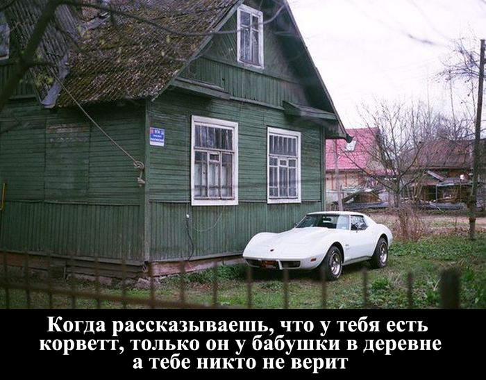 http://trinixy.ru/pics5/20150911/podborka_01.jpg