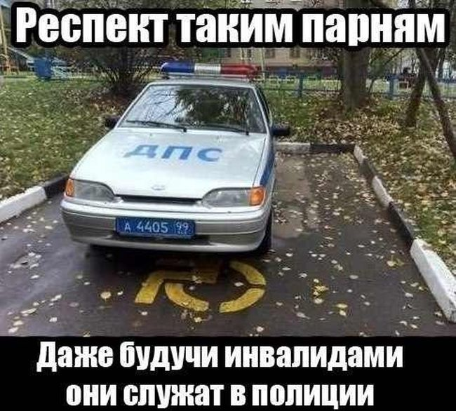 http://trinixy.ru/pics5/20150911/podborka_52.jpg
