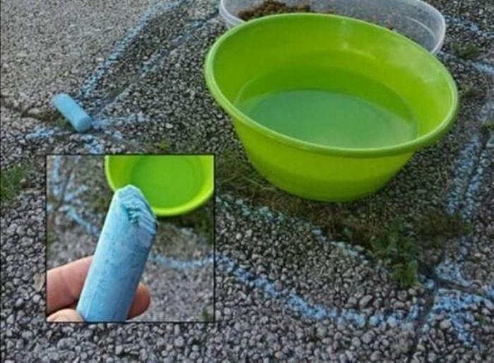 Полезные лайфхаки для хозяев кошек (29 фото)