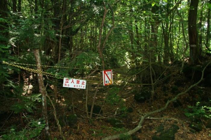 Самые жуткие места на земле (39 фото)