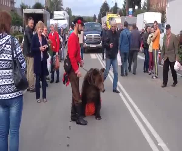Мужчина привел на выборы медведицу