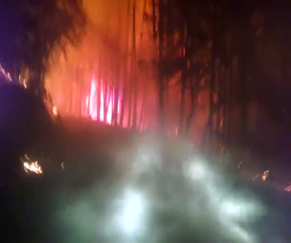 Спасительный путь сквозь лесные пожары в Калифорнии