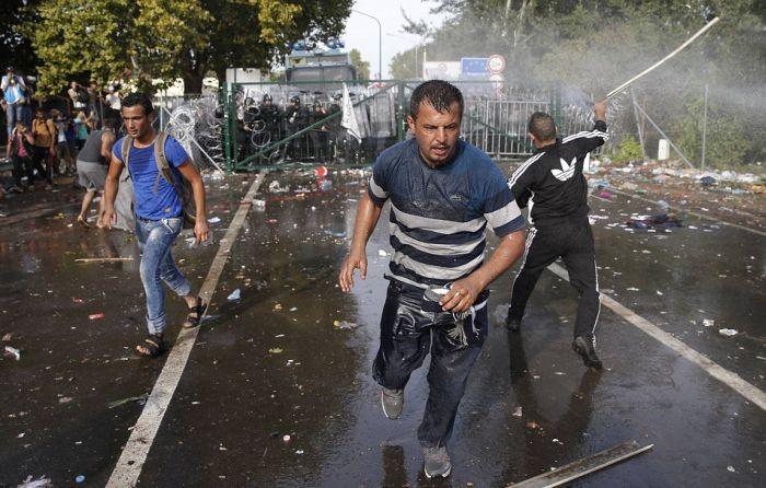 Беженцы предприняли попытку штурма закрытой венгерской границы (15 фото + видео)