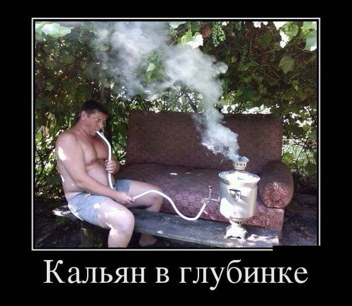 http://trinixy.ru/pics5/20150917/demotivatory_12.jpg