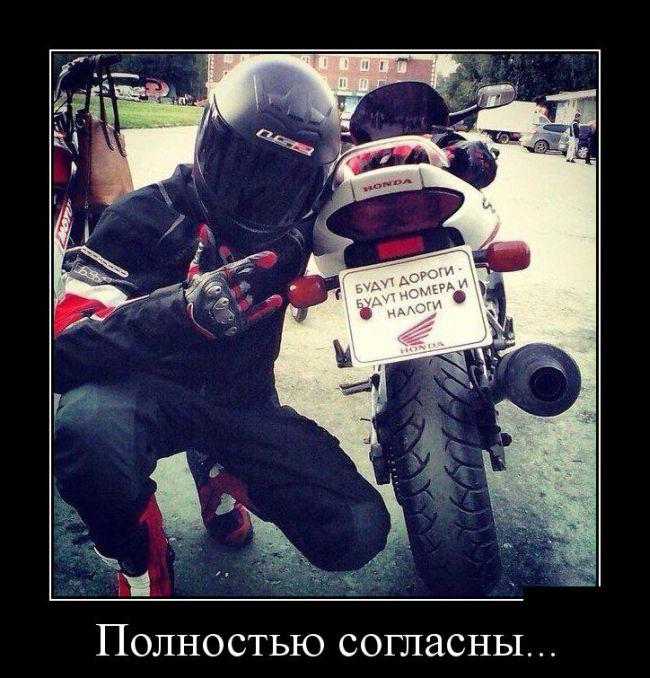 http://trinixy.ru/pics5/20150917/demotivatory_16.jpg