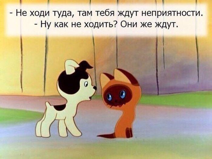 http://trinixy.ru/pics5/20150917/podborka_23.jpg