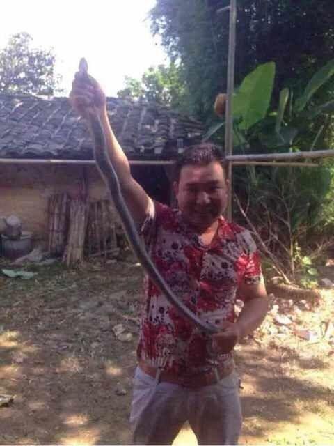 Китаец и ядовитая змея (3 фото)
