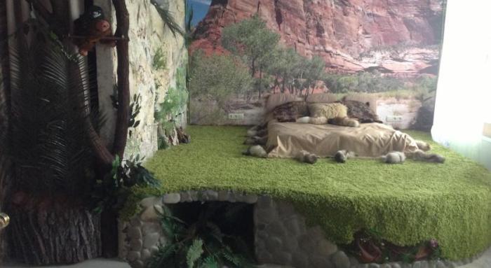 Квартира в стиле джунглей (13 фото)