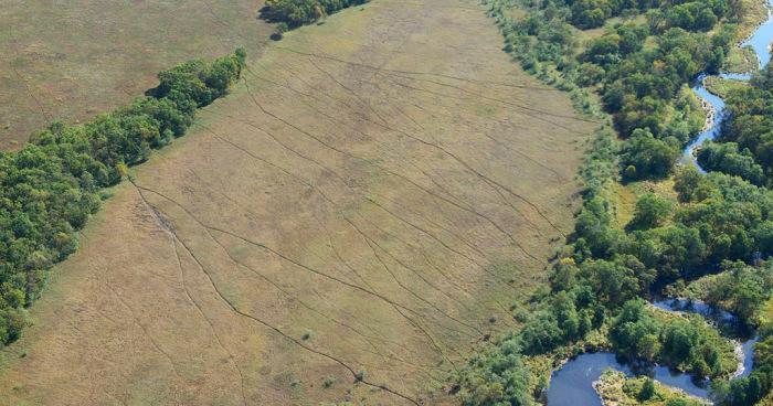 Угадайте, что это за линии в поле? (5 фото)