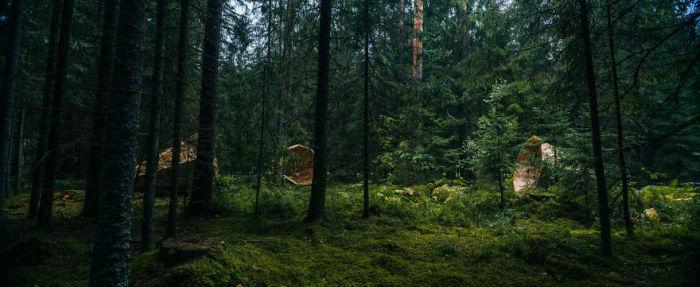 Эстонские студенты усилили звуки природы благодаря гигантским рупорам (10 фото)
