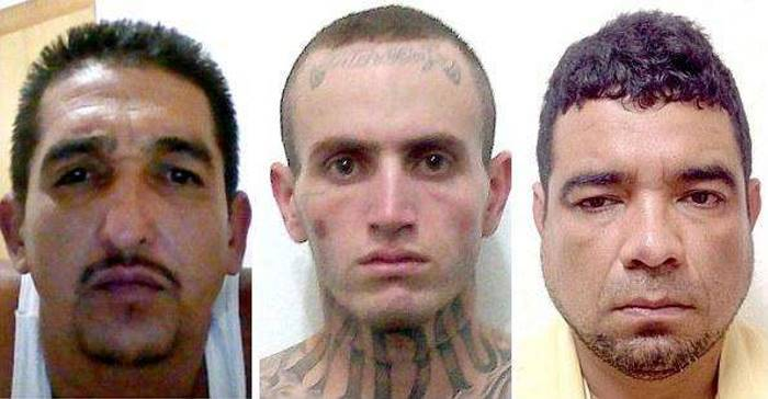 В Мексике арестована Мелисса «Ла Чина» Кальдерон, глава самого жестокого наркокартеля (10 фото)
