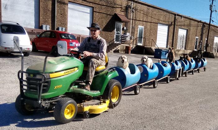 Пожилой американец собрал самодельный поезд и катает на нем бродячих собак (5 фото)
