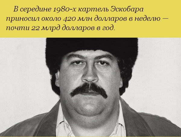 Невероятные факты о богатстве наркобарона Пабло Эскобара (10 фото)