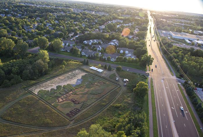 Ландшафтный дизайнер из США превратил поле в репродукцию картины Винсента Ван Гога (5 фото + видео)