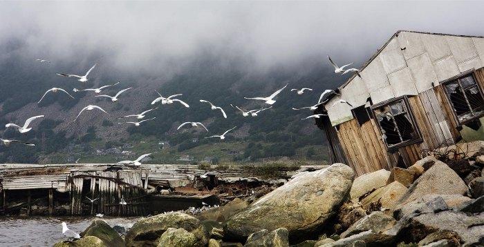 Лучшие работы в номинации «Мир в наших руках» фотоконкурса «Самая красивая страна» (10 фото)