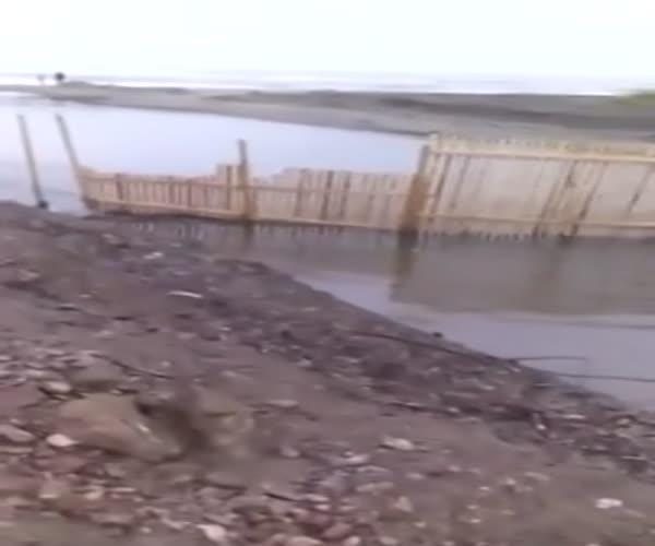 Браконьеры перегородили путь рыбе