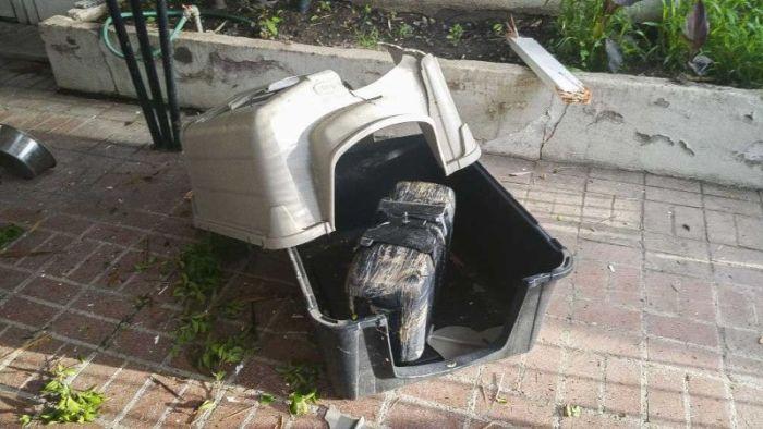 В США 11-килограммовый пакет с марихуаной упал с неба и пробил крышу дома (2 фото)