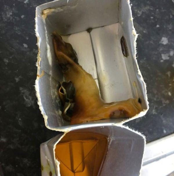 Отвратительная находка в коробке с соком (2 фото)