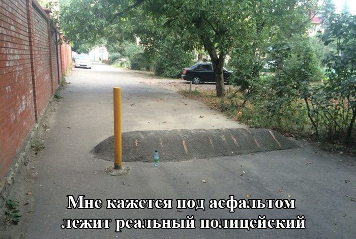 http://trinixy.ru/pics5/20151001/podborka_vecher_01.jpg
