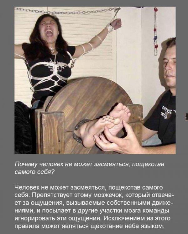 Факты в картинках (19 картинок)