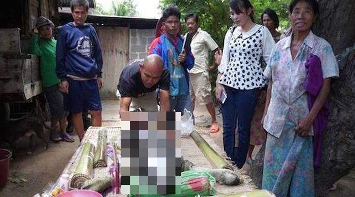 В Таиланде родилось животное-мутант, представляющее гибрид буйвола с крокодилом (3 фото + видео)