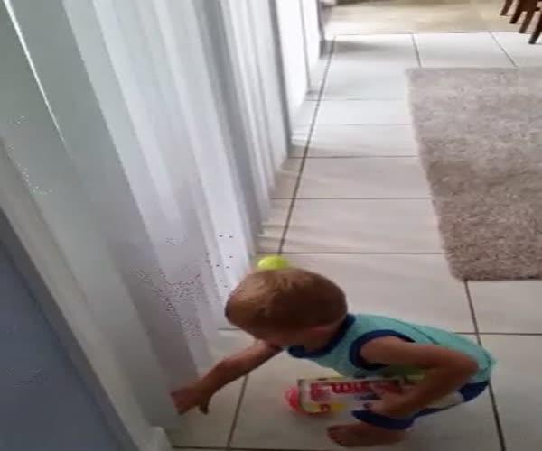 Малыш нашел себе бесконечную забаву