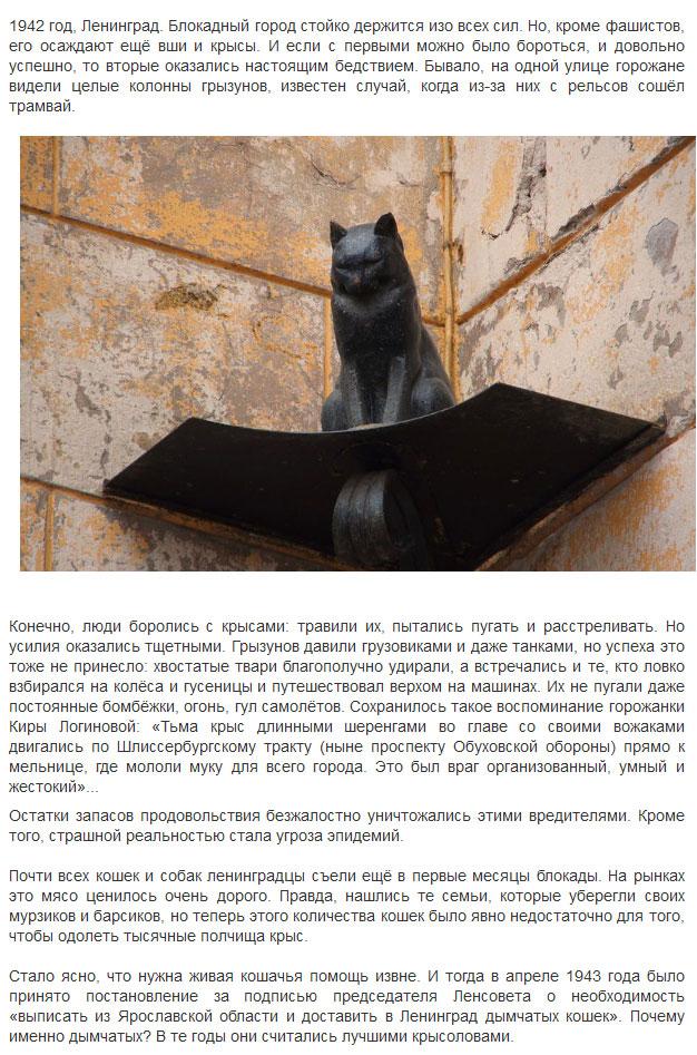 Хвостатые спасители блокадного Ленинграда (5 фото)