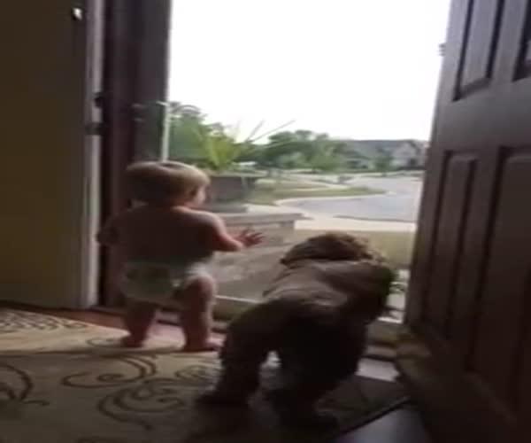 Малыш и собака встречают папу