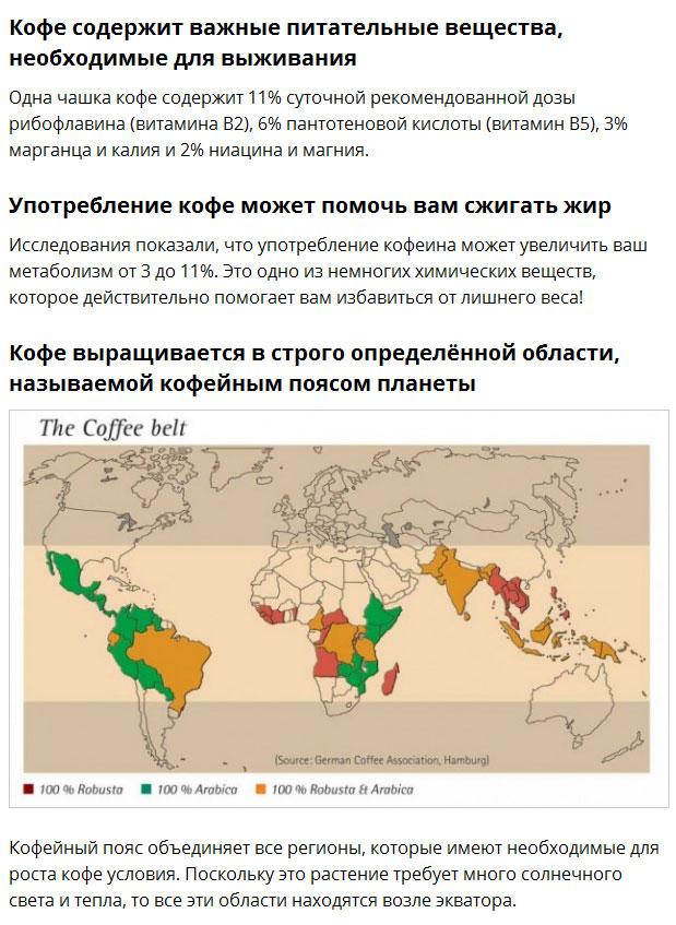 Интересные факты о кофе (10 фото)
