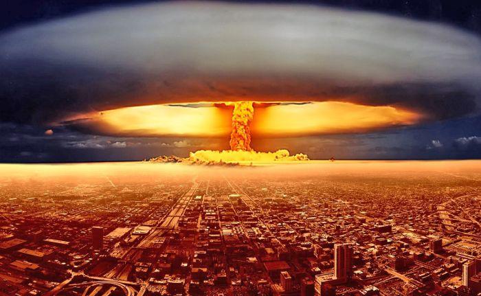 Формы жизни, способные пережить ядерную войну (10 фото)