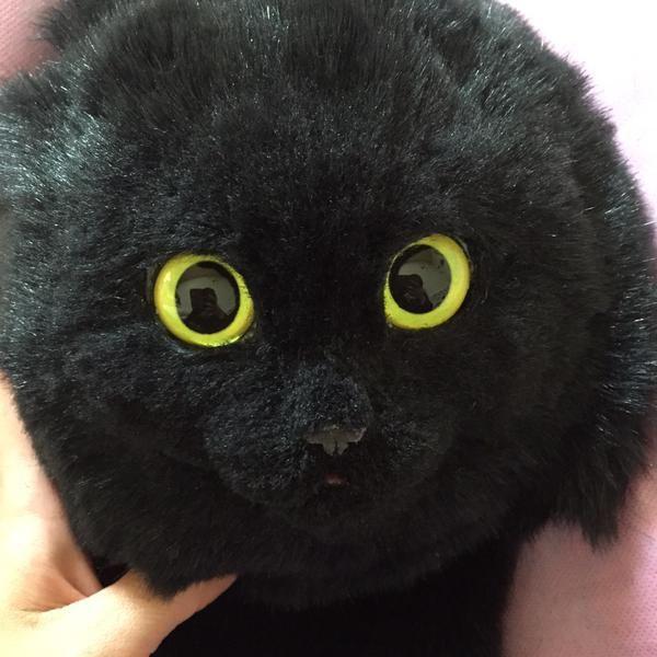 Эту вещь легко можно спутать с настоящей кошкой (10 фото)