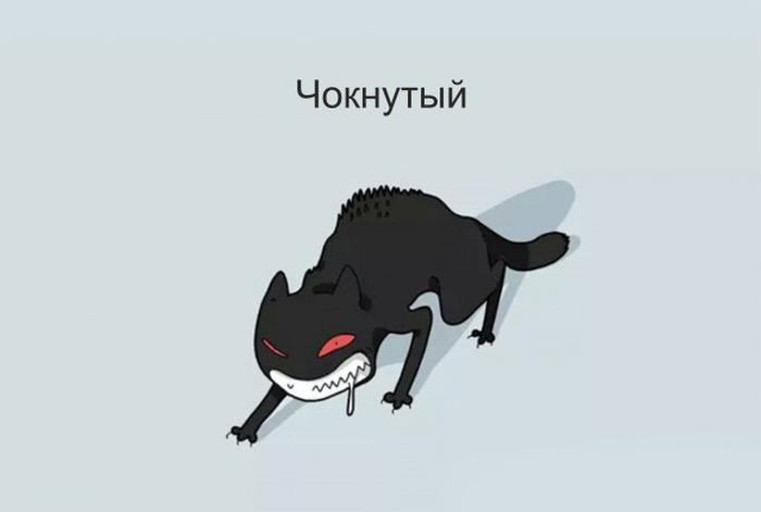 Шуточная классификация котов в веселых рисунках (12 картинок)