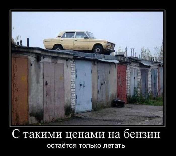 http://cdn.trinixy.ru/pics5/20151022/demotivatory_02.jpg