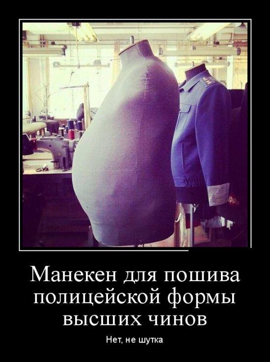 http://cdn.trinixy.ru/pics5/20151022/demotivatory_05.jpg
