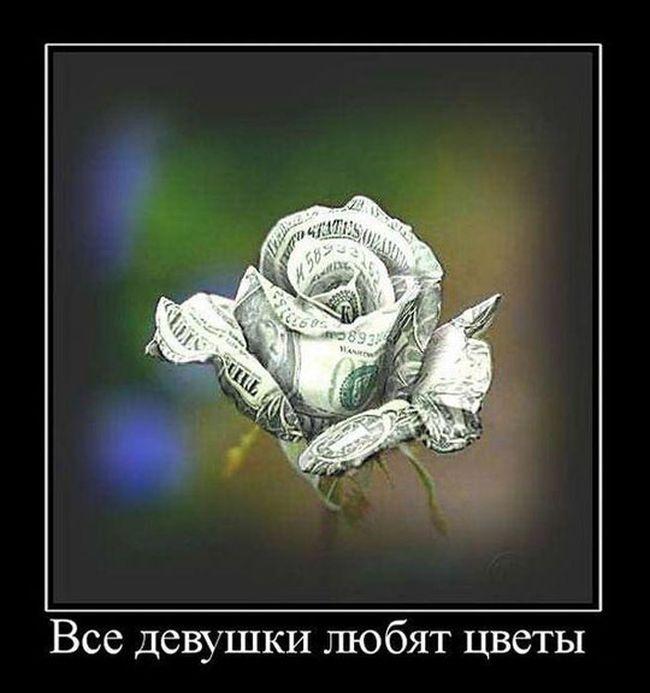 http://cdn.trinixy.ru/pics5/20151022/demotivatory_09.jpg