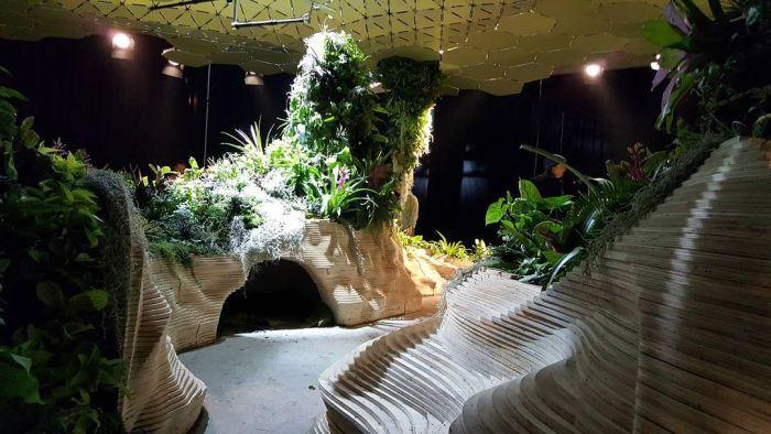 Тропический лес Lowline Lab внутри старого нью-йоркского склада (9 фото)