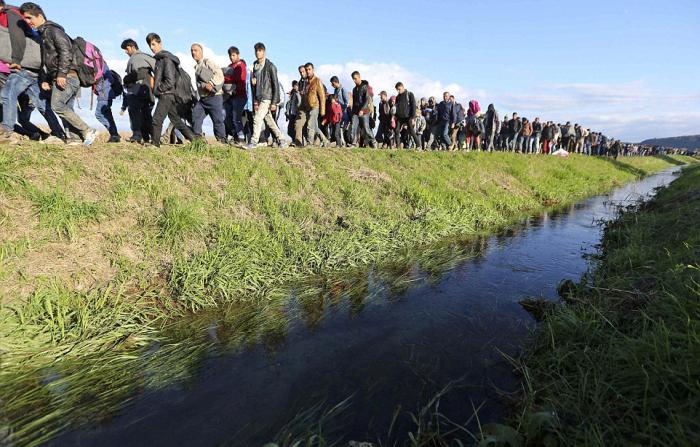 Словения просит полицейских у других стран ЕС, чтобы справиться с притоком беженцев (30 фото)