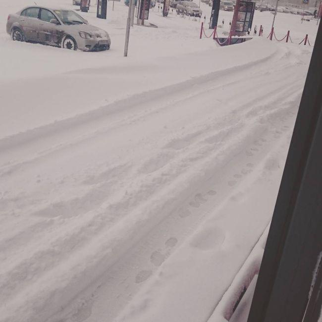 Снегопад спровоцировал дорожный коллапс в Омске (13 фото + видео)