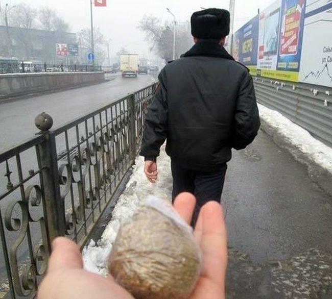 Премия Дарвина, русская версия (38 фото)