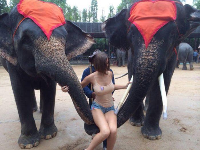 Фотосессия девушки привлекла внимание пользователей сети (8 фото)