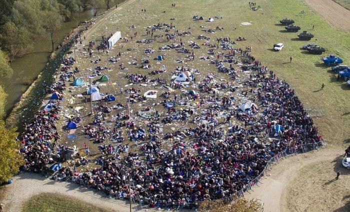 Многотысячная колонна беженцев идет пешком через поля Словении (6 фото)