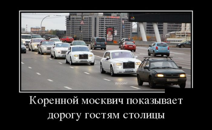 http://cdn.trinixy.ru/pics5/20151029/demotivatory_08.jpg