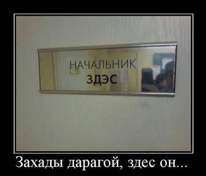 http://cdn.trinixy.ru/pics5/20151029/demotivatory_27.jpg