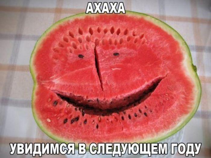http://cdn.trinixy.ru/pics5/20151029/podborka_vecher_06.jpg