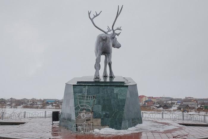 Жизнь на полярном круге (40 фото)