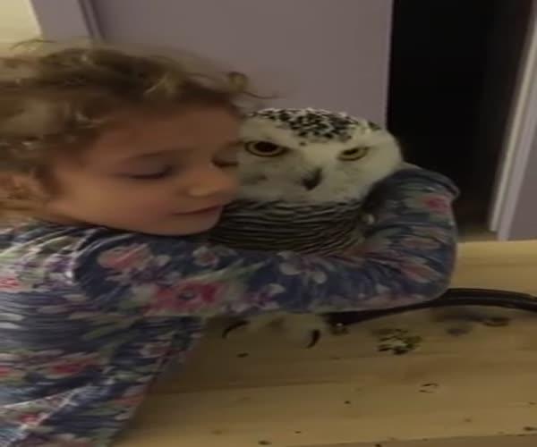 Девочка обнимается с совой
