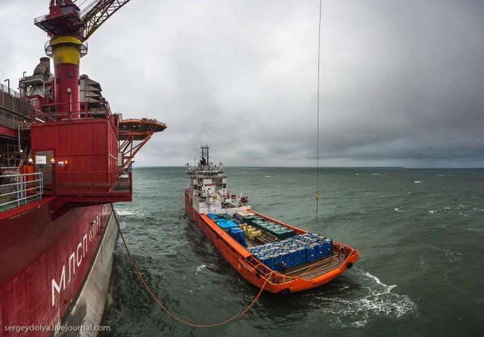 Экскурсия на нефтяную платформу «Приразломная» (46 фото)