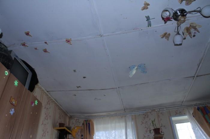 Как выжить в собственном доме (17 фото)