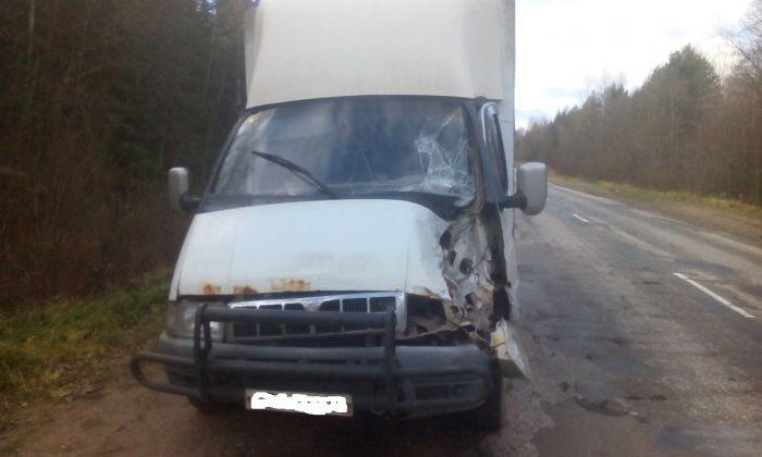 Последствия столкновения с запаской грузовика (фото + видео)
