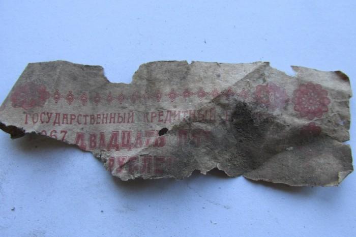 «Птичий архив» под крышей Успенского собора (48 фото)